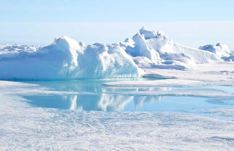 Lượng băng đá tại Bắc Cực đang giảm sút thảm hại.
