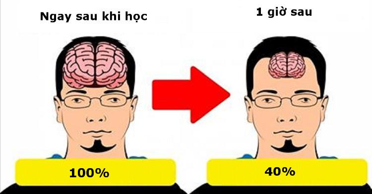 Nếu cứ liên tục nạp thông tin, não sẽ bị quá tải.
