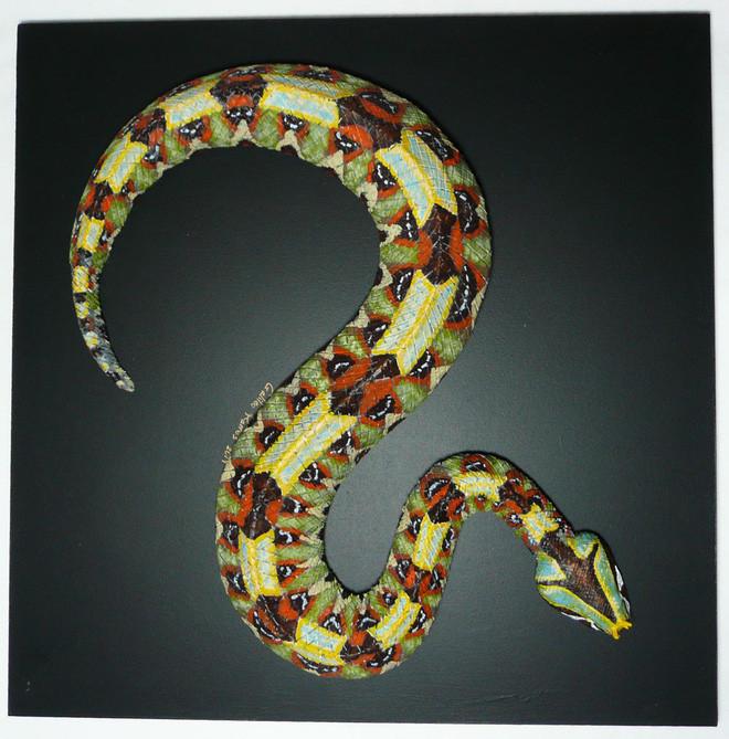 Hoa văn sặc sỡ đẹp mắt của rắn viper.