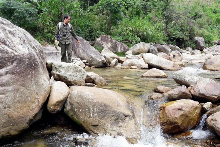 Thượng nguồn suối Chảng Phàng