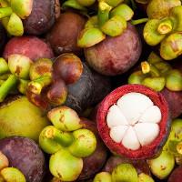 Việt Nam vinh dự sở hữu 3 trong 10 loại quả hiếm nhất thế giới