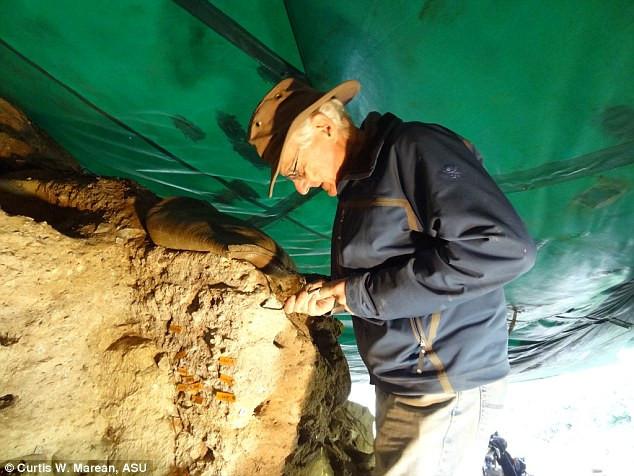 Các nhà khoa học đang nghiên cứu những nơi mà các cụm người còn sót lại ẩn náu