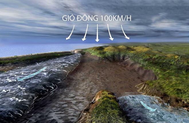 Cơn gió Đông mạnh mẽ đã thổi suốt đêm, làm mặt nước tách đôi ngay tại vị trí đầm phá ven bờ Bắc của Biển Đỏ.