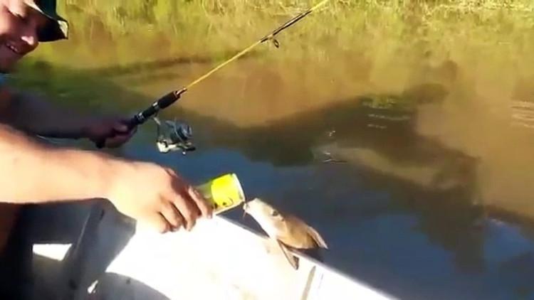 Có vẻ hiểu ý chú cá, một người đàn ông ngay lập tức chìa lon bia cho chú cá uống.