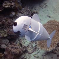 Chú cá robot có thể bơi ở độ sâu 15m mà không bị phát hiện
