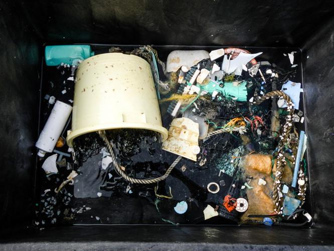 Những mẫu rác thải nhựa được nhóm nghiên cứu thu thập.