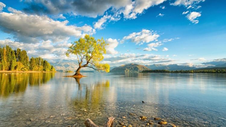 Hồ Wanaka