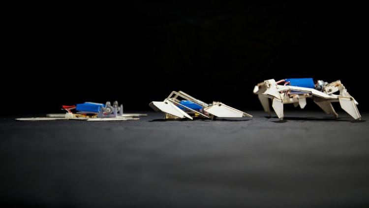 Robot triển khai từ trạng thái phẳng.