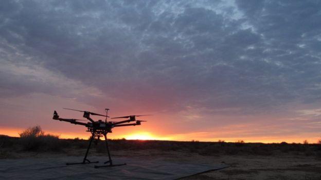 Thiết bị bay không người lái (drone) có thể tự động cung cấp số lượng chính xác các loài nguy cấp.