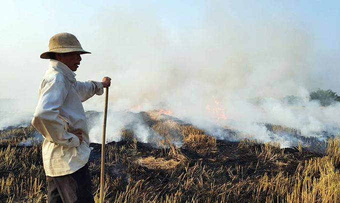 Sau mỗi mùa thu hoạch, người dân lại đốt đồng nhằm tận dụng tro làm phân bón.