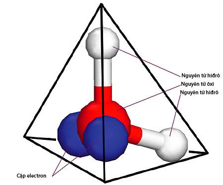 Cấu trúc tứ diện của phân tử nước.