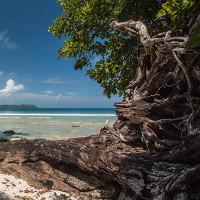 """Hòn đảo """"ma"""" giữa lòng Ấn Độ Dương"""