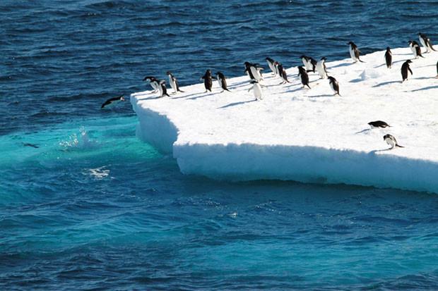 Nhiệt độ ấm hơn đồng nghĩa với không khí ẩm hơn, tạo điều kiện cho tuyết rơi nhiều hơn tại Nam Cực.