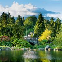 Thành phố có nhiều cây nhất thế giới