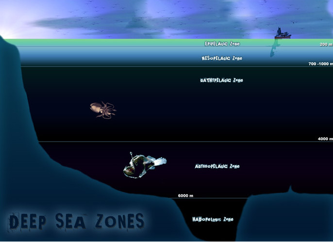 Đại dương luôn là thế giới thách thức sự khám phá của loài người.