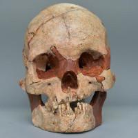 Tìm thấy sọ người 16.000 tuổi gần nguyên vẹn