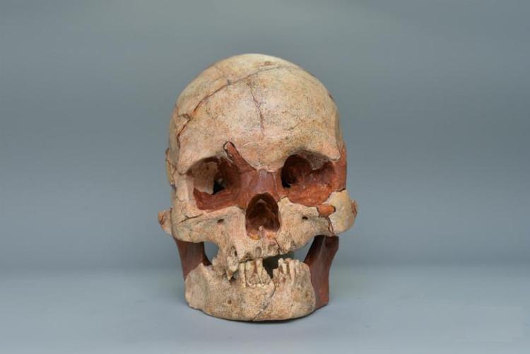 Sọ người hoàn chỉnh 16.000 năm tuổi được phát hiện ở Quảng Tây