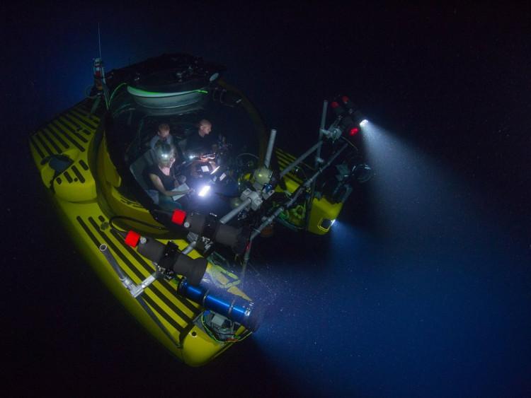 Với công nghệ hiện tại, con người ngày càng khám phá được nhiều bí ẩn của đại dương.