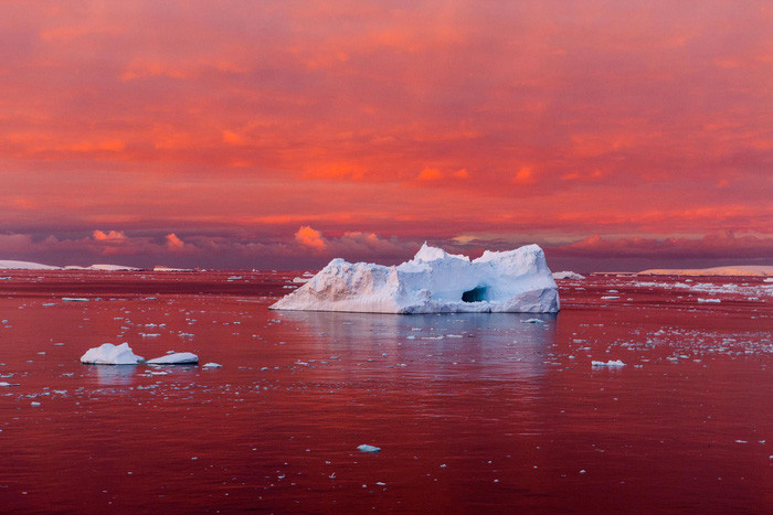 Hoàng hôn đỏ rực trên eo biển Lemaire