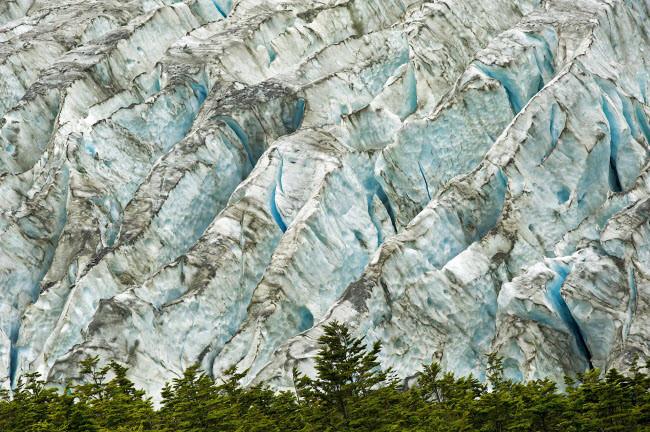Phong cảnh dòng sông băng và rừng trong bức ảnh chụp bởi nhiếp ảnh gia Stanislas Fautré.