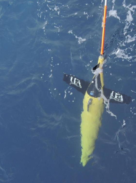 Một con robot Seaglider được triển khai trên Biển Ả Rập (UEA).