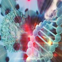 """""""Siêu tế bào"""" đánh bại ung thư, nhiễm trùng và sự lão hóa"""