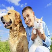 Sống ở vùng nông thôn, lớn lên cùng động vật sẽ giúp chúng ta ít bị trầm cảm hơn