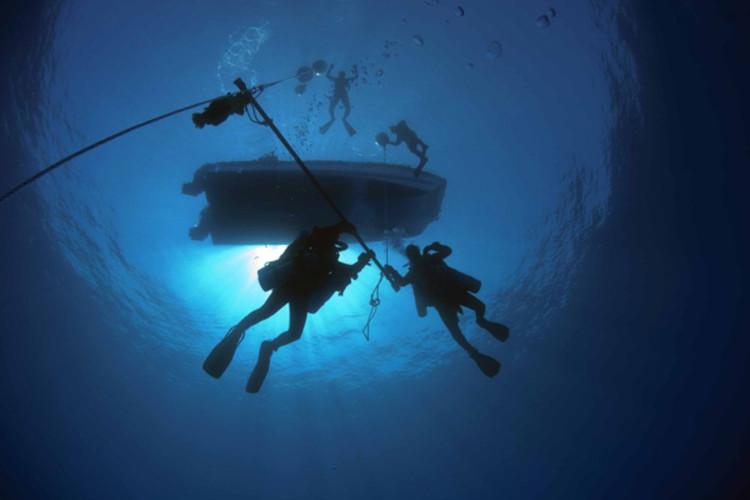 Có nhiều thứ dưới đại dương mà chúng ta chưa biết tới.