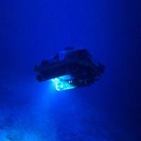 Vùng biển sâu 300m bí ẩn ở Bermuda: Xuất hiện sinh vật chưa từng biết trên Trái Đất
