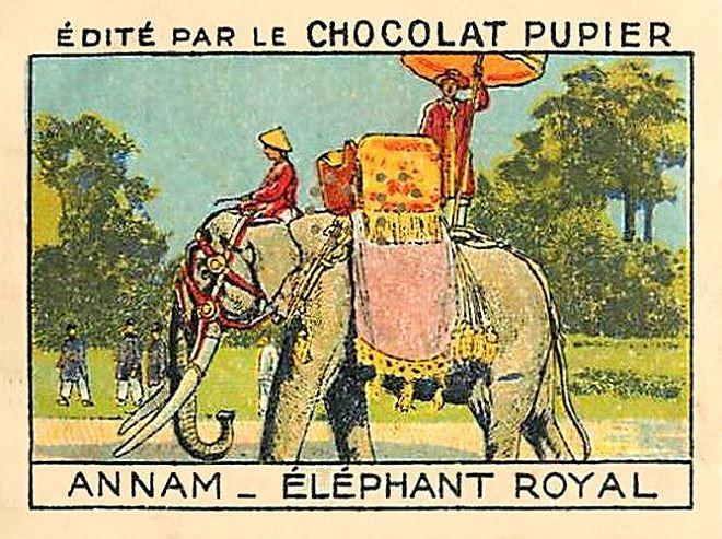 """Trong bức tranh người Pháp vẽ đây phải là """"long tượng"""", là """"voi của vua""""."""