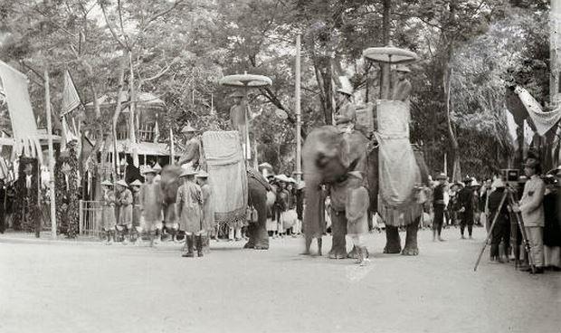 Lực lượng tượng binh trong lễ tế Nam Giao năm 1924.