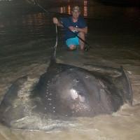 Dạy con câu cá, bất ngờ bắt được cá đuối khổng lồ lớn nhất Nam Phi