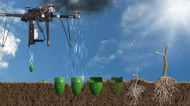 Một Drone có thể trồng được tới 100.000 cây trong 1 ngày