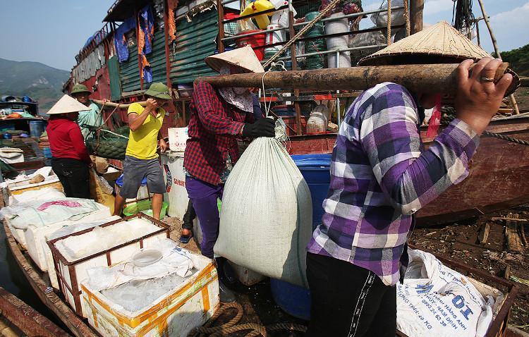 Các loại cá nhỏ thường về vào buổi đêm và sáng sớm, việc mua bán cá lớn diễn ra buổi chiều