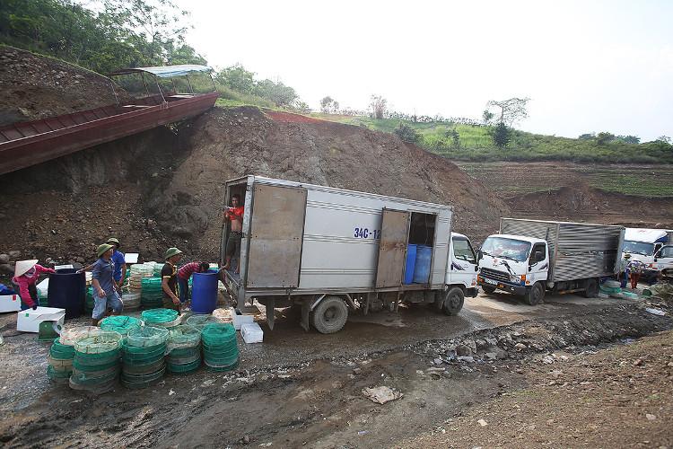 Xe tải xếp hàng xuống bến thu mua thủy sản
