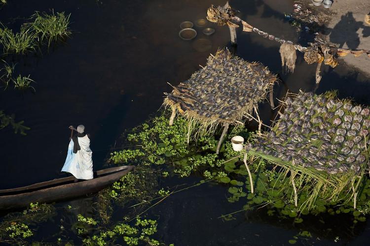 Sống trong đầm lầy, người ta dùng thảm thực vật kết tủa cùng bùn đất để làm chỗ ở.