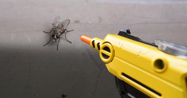 Khẩu súng Bug-A-Salt.