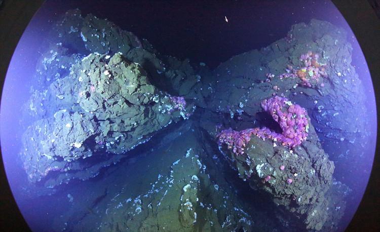 """Trải qua hàng triệu năm, các lớp đá magma này có thể hình thành """"đảo"""" núi lửa."""