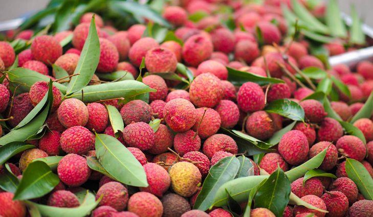 Vải mang nhiều dưỡng chất và vitamin giúp chống lại vô số căn bệnh.