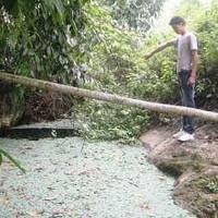 """Những chuyện kỳ bí về """"hang nuốt người"""" ở Lào Cai"""