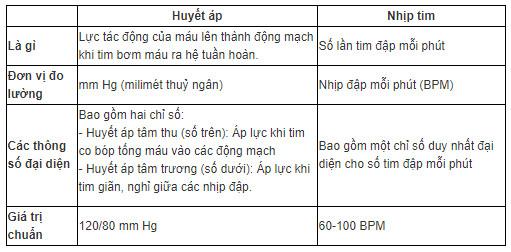 Sự khác biệt giữa huyết áp và nhịp tim
