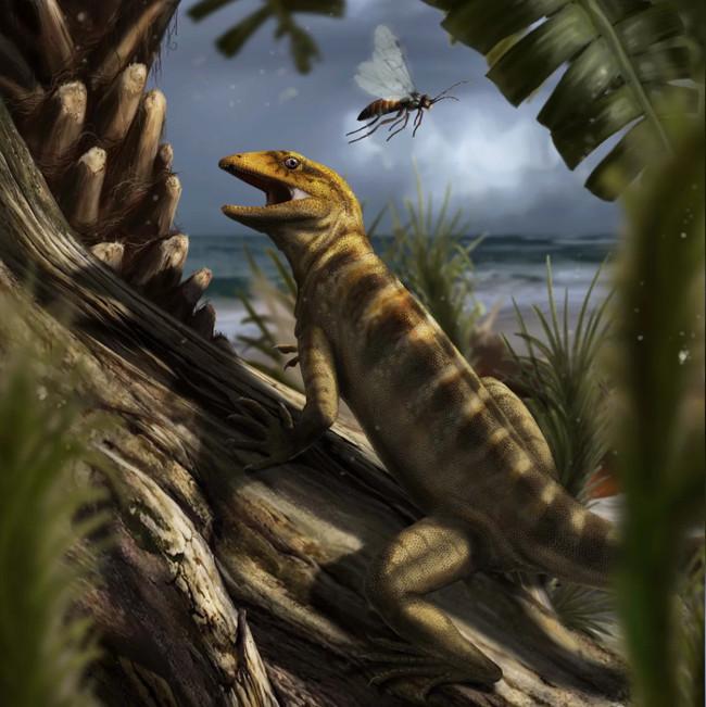 Thằn lằn cổ đại Megachirella wachtleri có thể là tổ tiên của các loài bò sát có vảy.