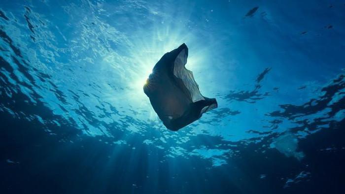 Hằng năm, khoảng 8 triệu tấn rác nhựa bị thải vào đại dương