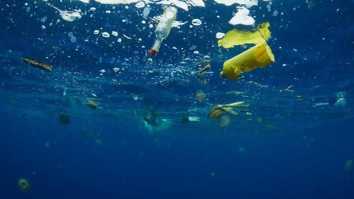 Thậm chí ở những vùng biển vắng vẻ nhất, bạn cũng có thể tìm thấy rác nhựa