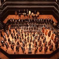 """Khoa học """"giải mã"""" những tác dụng thần kỳ của việc nghe nhạc cổ điển"""