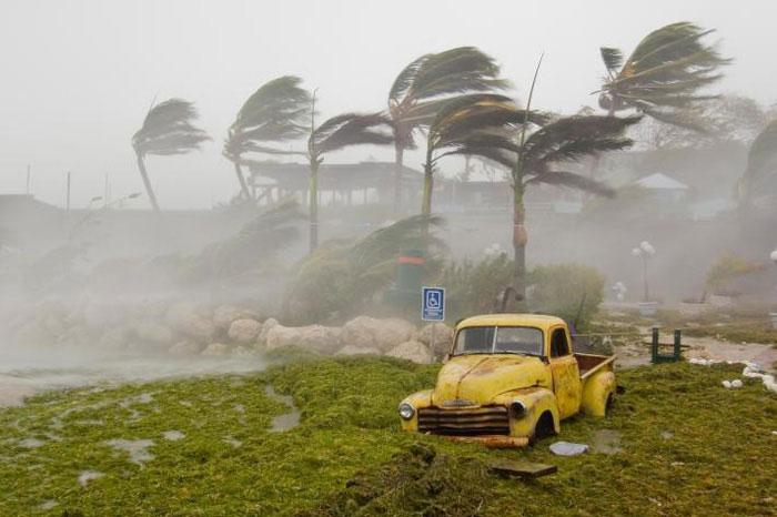 Các cơn bão ngày càng di chuyển chậm hơn.