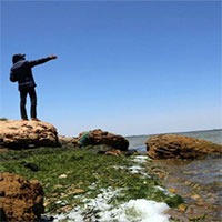 """WWF: Địa Trung Hải sắp trở thành """"biển nhựa"""""""