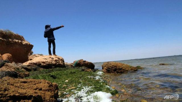 Một người đàn ông hướng ra biển Địa Trung Hải từ quần đảo Kerkennah, Tunisia