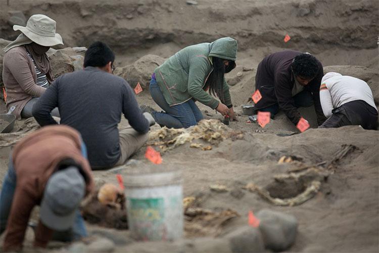 Hàng chục nhà khảo cổ tập trung khai quật các hài cốt