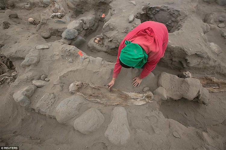 Các nhà khoa học bất ngờ vì mức độ bi thảm của các nghi thức hiến tế tại Peru
